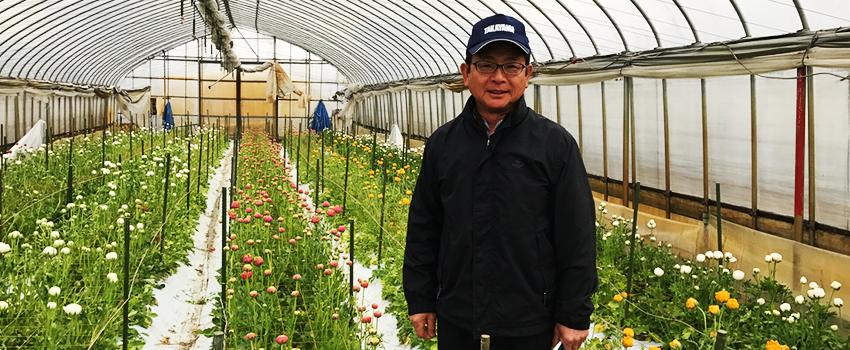 花きの栽培で遮光剤散布の手間が軽減! 秋田県大仙市 荒川様