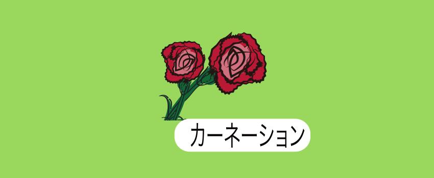 北海道鵡川カーネーション