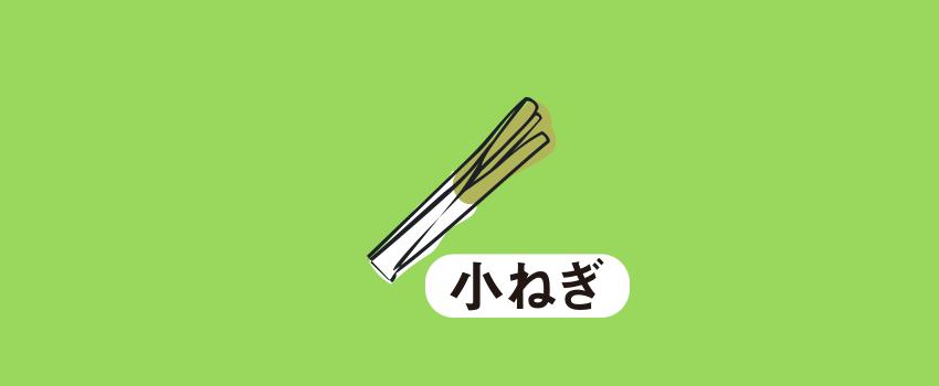 佐賀県神崎市小ネギ