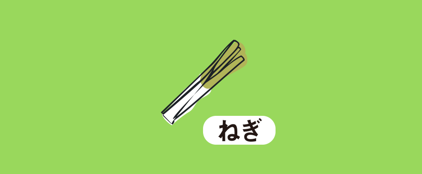 福岡県八女市ネギ