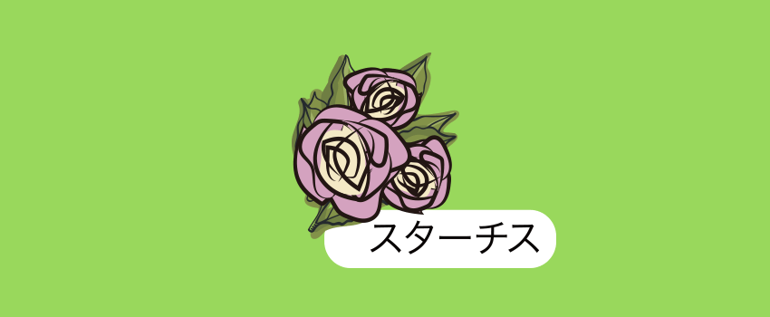 北海道雨竜スターチス