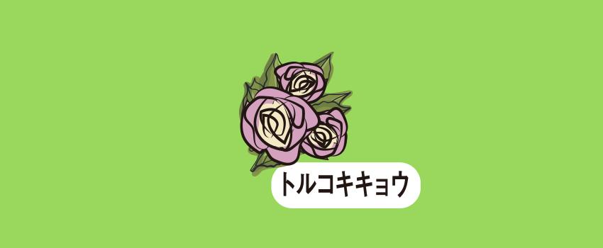静岡県袋井市トルコギキョウ